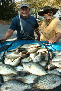 Kentucky lake crappie crappie guide pictures 2016 for Crappie fishing in tennessee