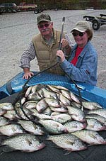 Crappie photos kentucky lake for Crappie fishing in ky